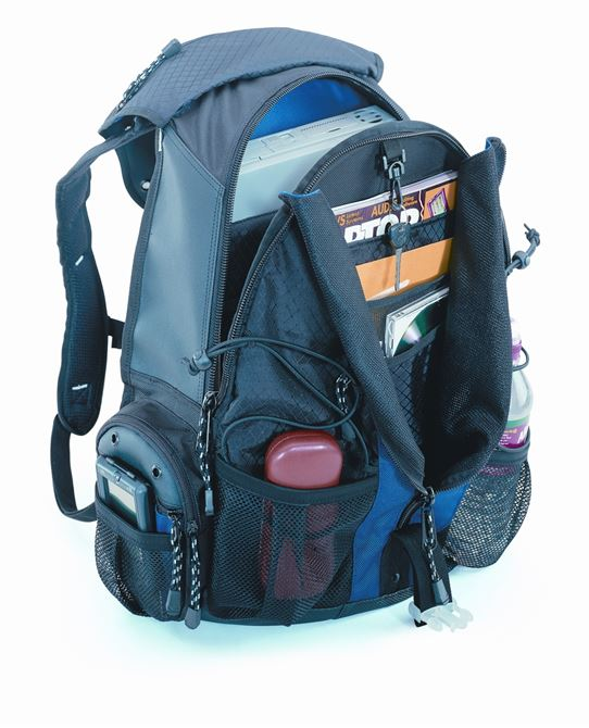 "Picture of 16"" Sport Deluxe Computer Backpack"