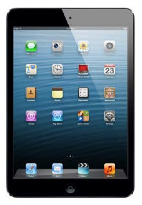 Picture of 4Vu Privacy Screen Filter for Apple iPad Mini