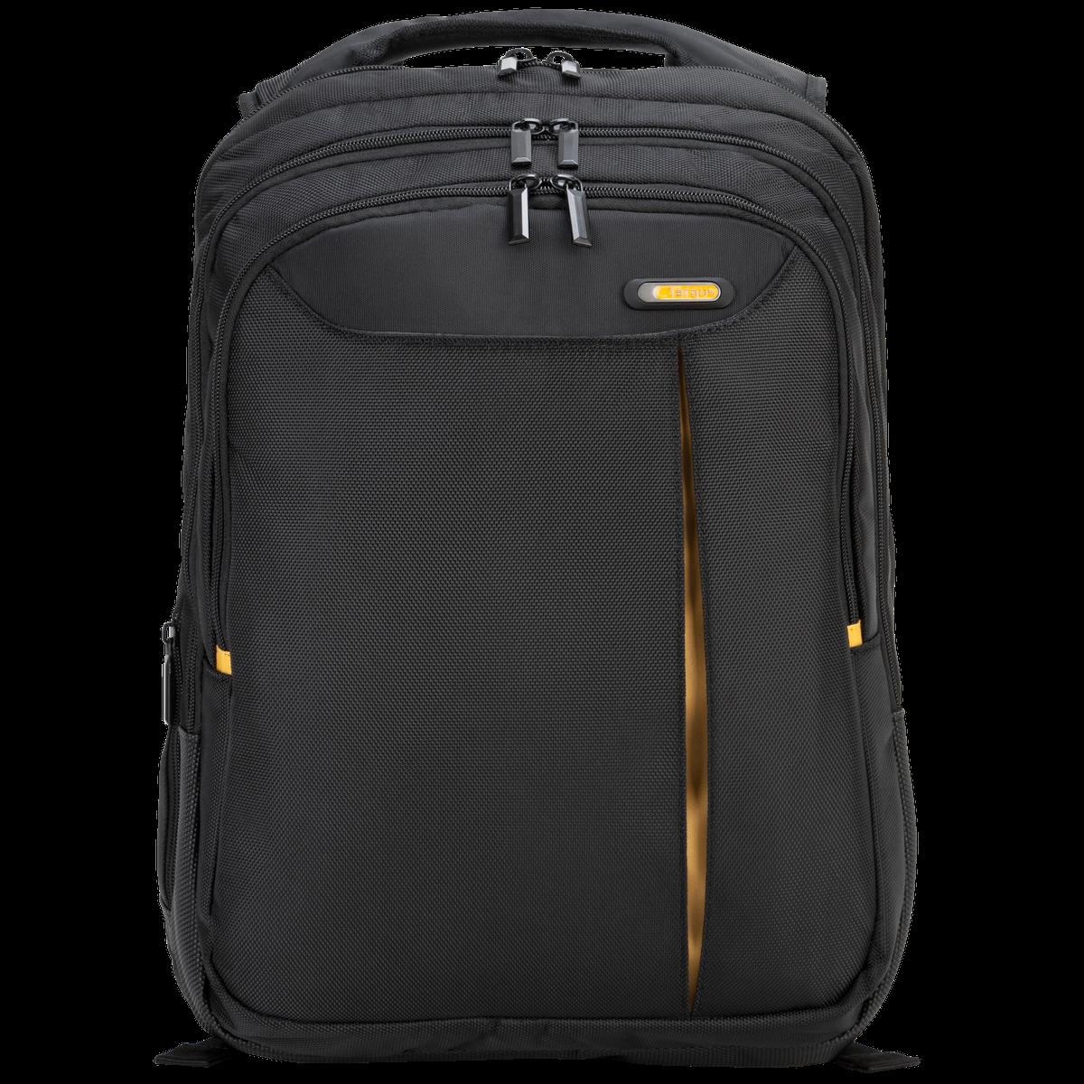"""15.6"""" Meridian II Backpack"""