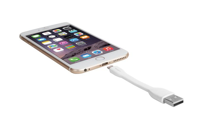 Picture of Ring Buckle Lightning Cable (White)